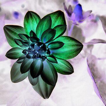 Photoshopped Flower 3 by yvonnecarsley