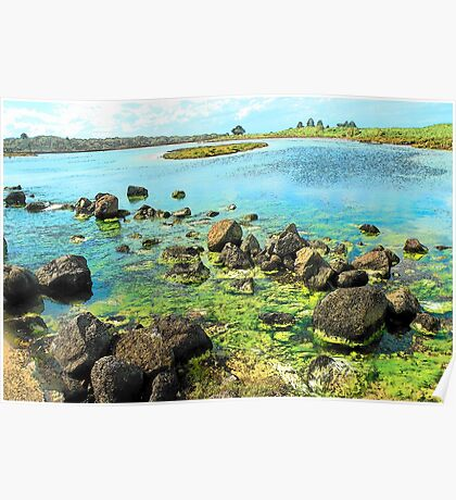 Rock Pools, Griffin Island, Port Fairy Poster