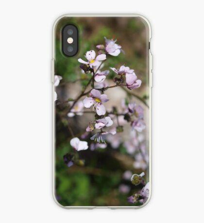 Diplopeltis hueglii (2) iPhone Case