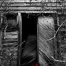 Abandoned by Jezzy Wolfe