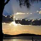 Sunset Silhouette at Pelican NSW Australia by Bev Woodman