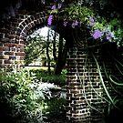 Secret Garden by Jezzy Wolfe