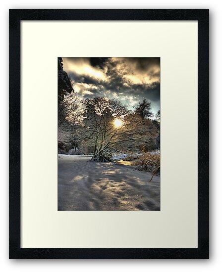 A county Down Winter Scene by Jonny Andrews