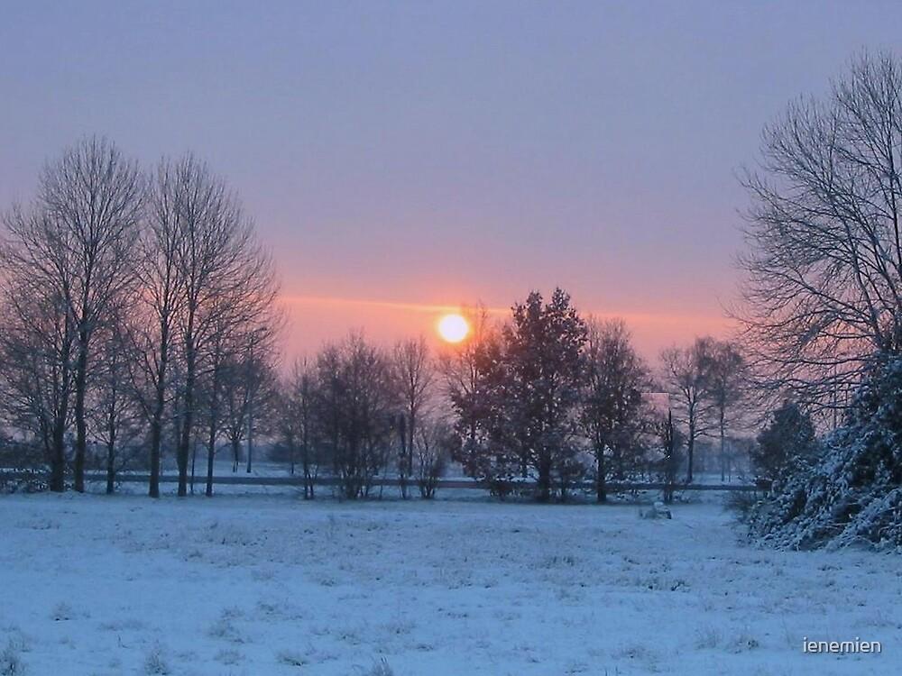 Winter Sunrise by ienemien