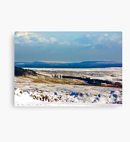 Winter on the North Yorks Moors Canvas Print