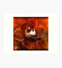 Orchid Series #3 Art Print