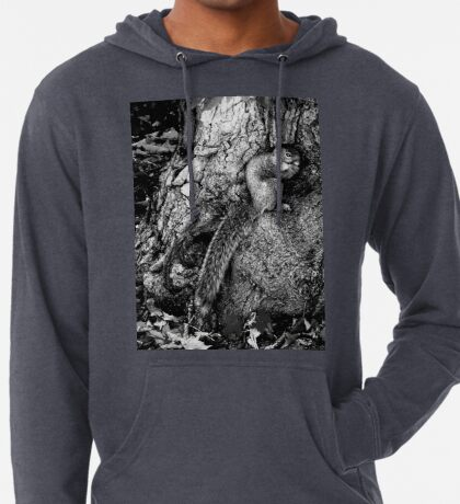 squirrel and the tree king Lightweight Hoodie