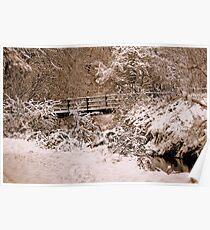 Footbridge In The Snow Poster