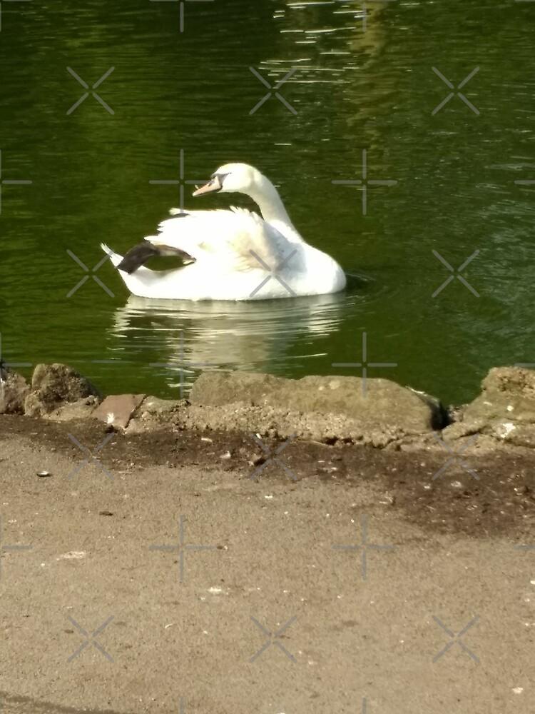 Merch #44 -- Swan - Shot 2 by Naean Howlett-Foster