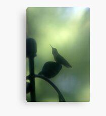Hummingbird 1 Canvas Print