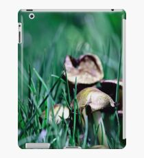 Fairy's World 1 iPad Case/Skin