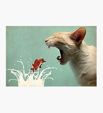 Get in my Belly Photographic Print