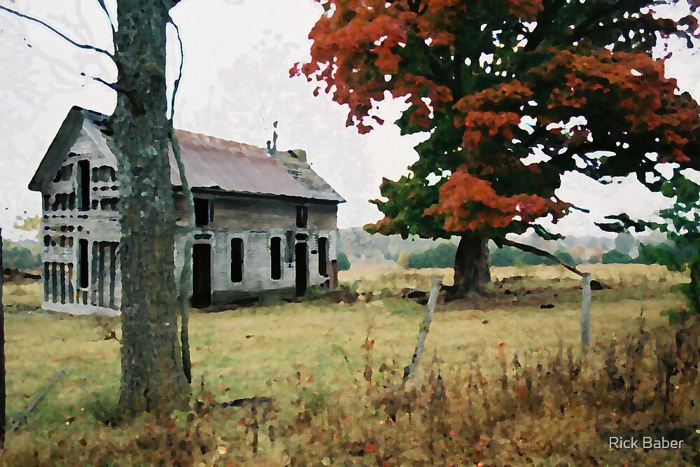 Old Ozark House 3 by Rick Baber