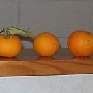 oranges without lemons by chrythmnove