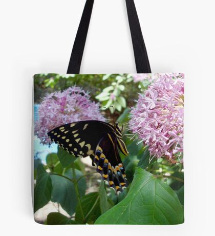 Giant Swallowtail Butterfly in profile Tote Bag