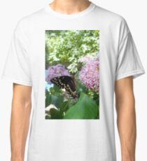 Giant Swallowtail Butterfly in profile Classic T-Shirt