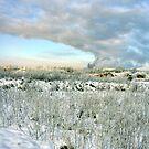 """""""Industrial Winter"""" by Bradley Shawn  Rabon"""
