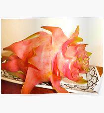 Pi PI Pitaya-  DRAGON FRUIT Poster