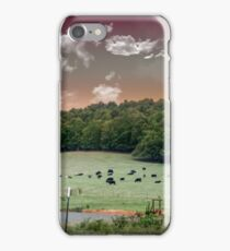 Cows of New Hope iPhone Case/Skin