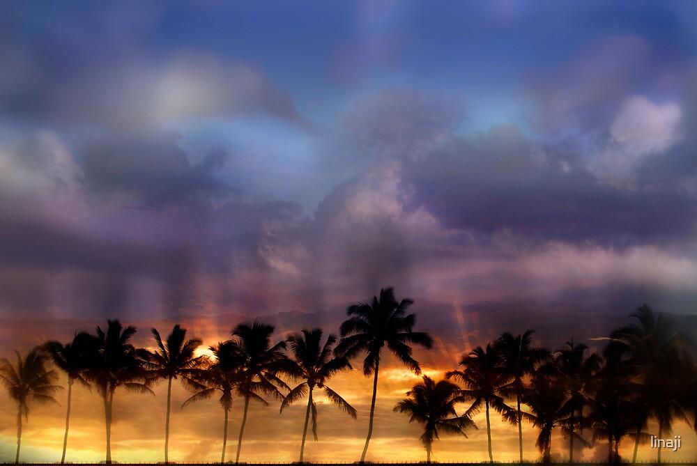 Dreaming in Kauai by linaji