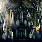 Organ at Exeter Cathedral by ajgosling