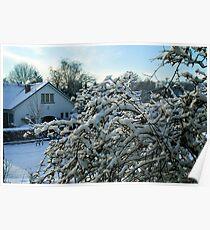 Winter in Edegem - Belgium Poster