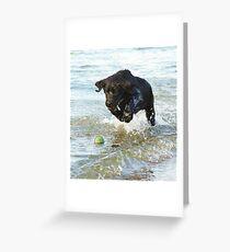 labrador love Greeting Card