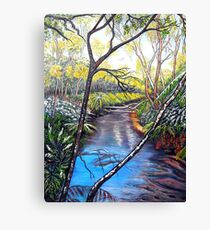 Snow at Katoomba Creek - Blue Mountains Canvas Print