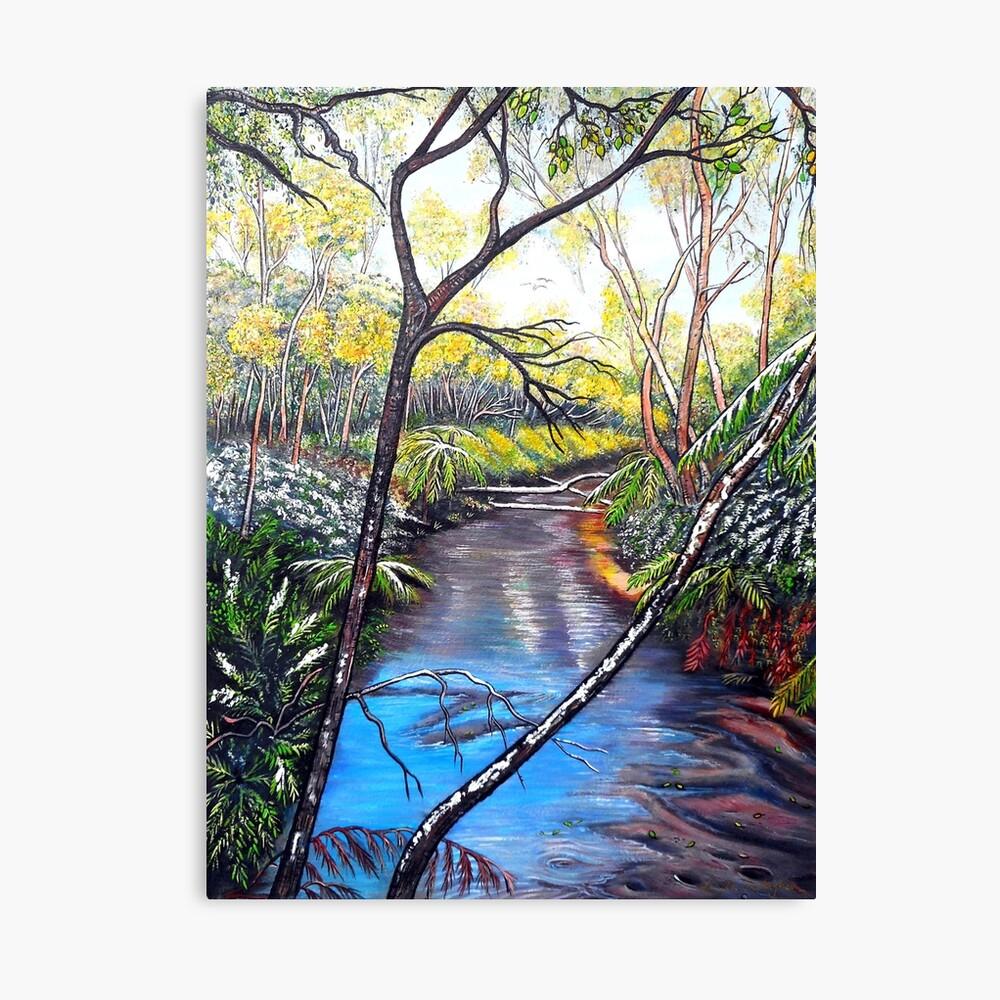 Snow at Katoomba Creek - Blue Mountains Canvas Print