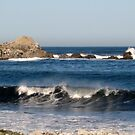 California Waves by MaryLynn