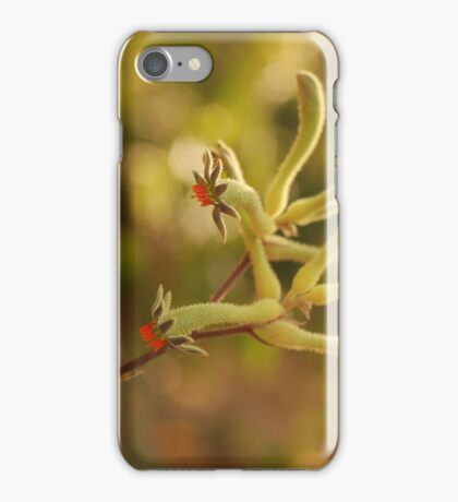 colours of the south west iPhone Case/Skin