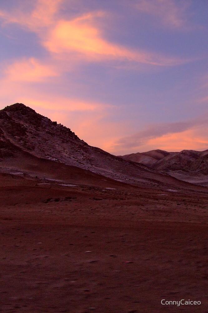 Desert - when the sun goes down by Constanza Barnier