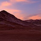 Desert - when the sun goes down by Constanza Barnier