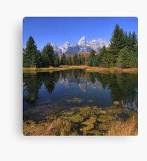 Schwabacher Landing Reflections - The Tetons Canvas Print