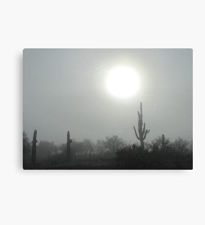 Fog in the Desert Canvas Print