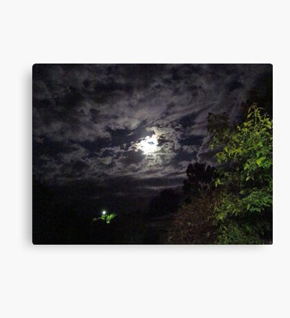 From light to light in the night Canvas Print