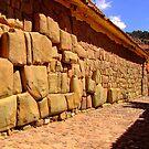 Inca stones by Constanza Barnier