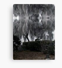 Tree caught in freezing fog Canvas Print