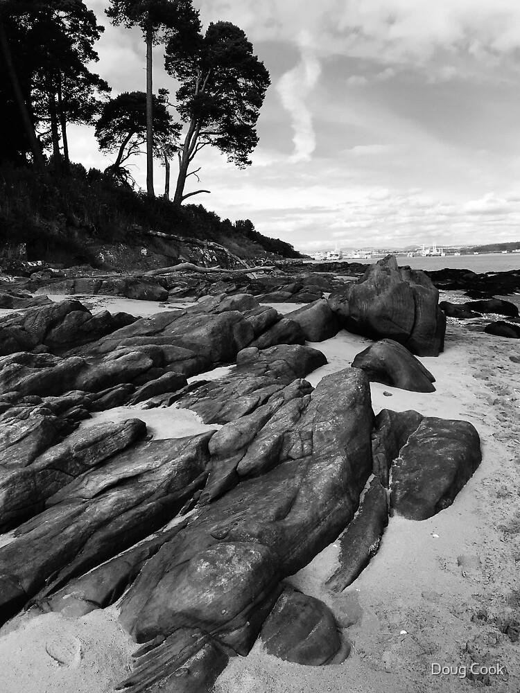 Those Damn Rocks Again by Doug Cook