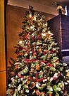 Oh Christmas Tree! Oh Christmas Tree! (HDR) by Ryan Davison Crisp