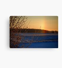 Frost Bow Canvas Print