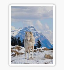 White Grey Wolf & Rocky Mountains Art  Sticker