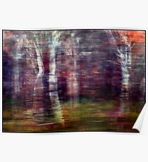 Winter Wind and Woods and Rain Poster