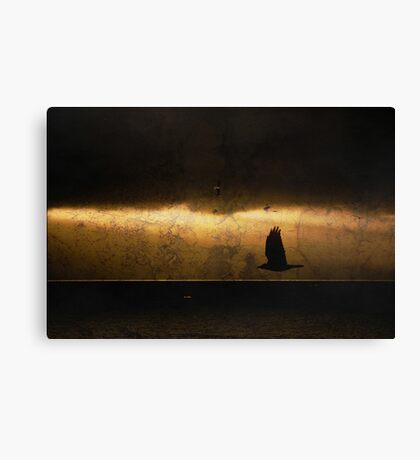 Crow was Crow without fail Canvas Print