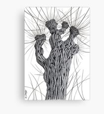 Pollard Willow Tree - Pen Drawing Canvas Print