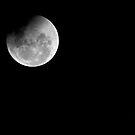 Moon so Bright by Barbara Burkhardt