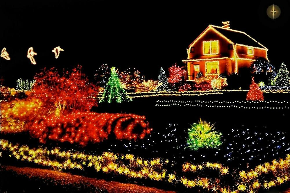 ...THE JOY OF CHRISTMAS LIGHTS~ by RoseMarie747