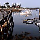 Quiet Harbor - Cape Newagen,  Maine by T.J. Martin