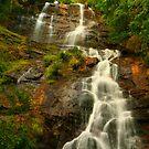 Amicalola Falls by Adam Kuehl