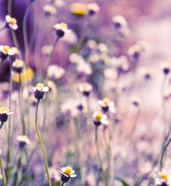SOLD; Purple field: Explore; Got 7 Featured Work, One Explore Featured by Kornrawiee
